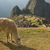 peru-ciudad-cuzco-7